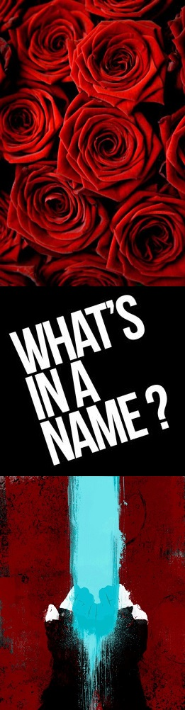 "Sermon From September 29th 2013 / ""What is in a Name?"" - Image 1"