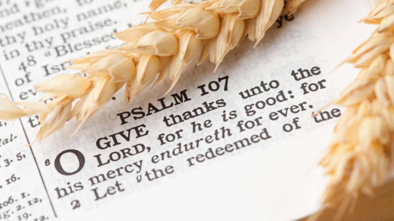 Sermon / Oct 9, 2016 / Thanksgiving / Deut 10-11; 17-18a / Pastor Terry Defoe