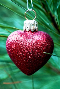 Sermon / Pr. Ted Giese / Saturday December 24th 2016 - / Luke 2:1-20 / How's Your Heart This Christmas? - Image 3