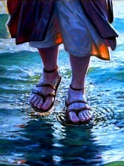 Sermon / Pr. Ted Giese / Season Of Pentecost Proper 15 Sunday August 20th 2017 - / Matthew 15:21-28 / Little Faith Great Faith? How Much Faith Do You Need? - Image 5