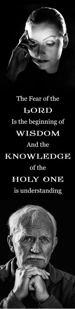 Sermon / Pr. Ted Giese / Trinity Sunday May 22nd 2016 - / Proverbs 8: 1-4, 22-31/ The Wisdom of God  - Image 4