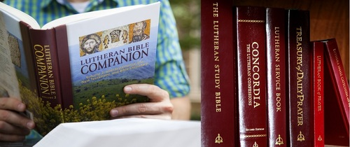 Book Of The Month For August 2014:  The Lutheran Bible Companion