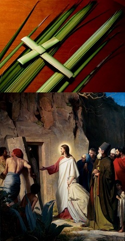 Christ the King: Bridegroom of the Daughter of Zion - John 12:12-19 / Pr. Ted Giese / Palm Sunday - Image 6
