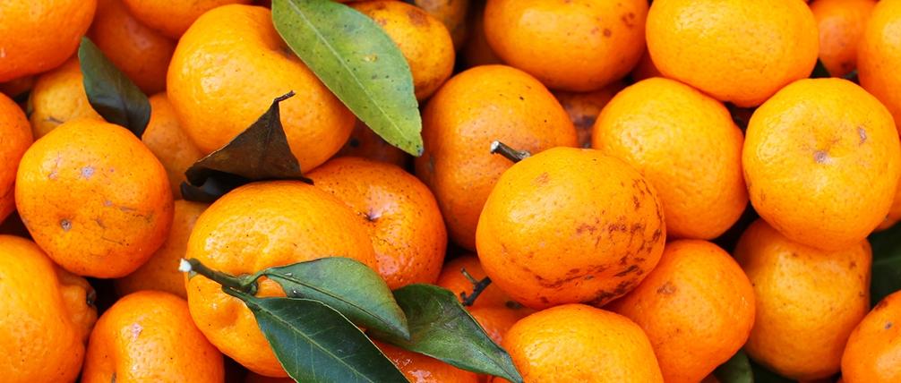 Christmas Oranges & Lumps of Christmas Coal Sermon / Luke 2:22-40 / Pr. Ted Giese / Sunday December 30th 2018: Season Of Christmas / Mount Olive Lutheran Church - Image 11