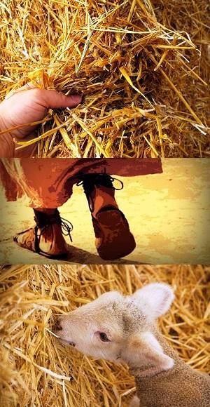 Flesh And Blood Jesus: Christmas Day - John 1:1-14 - Image 3