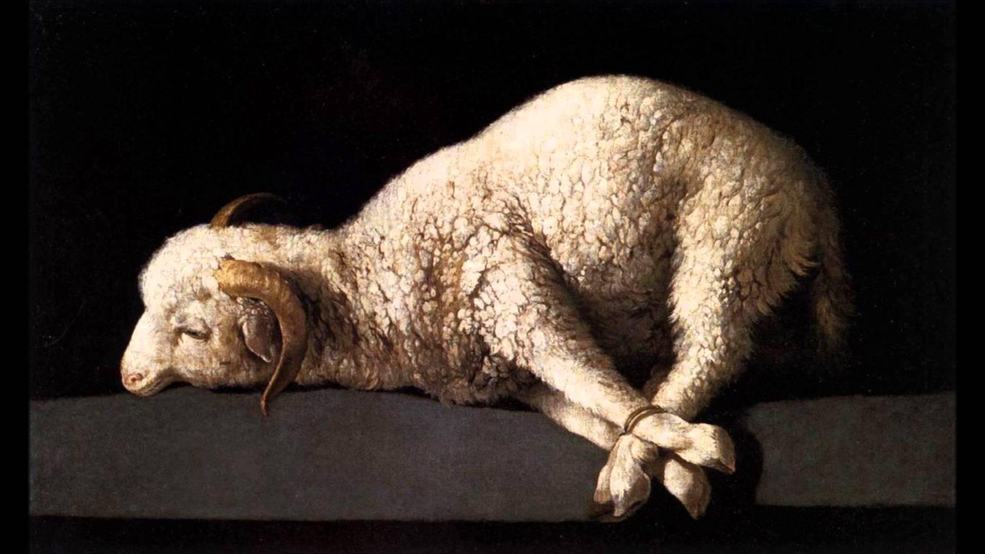 Sermon/ Lenten Preaching Exchange/ O Dearest Jesus, What Law Hast Thou Broken/ Vicar James Preus - Image 5