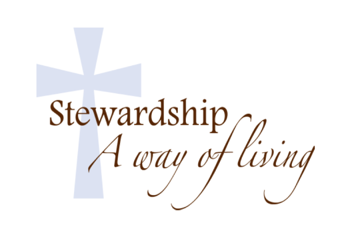 Sunday School Parent Connection: Sun. Feb. 23 - A Time For Everything: What is a Steward? - Image 2