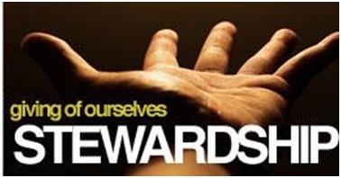 Biblical Stewardship - Image 1