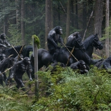 Dawn of the Planet of the Apes (2014) Directed by Matt Reeves - Movie Review