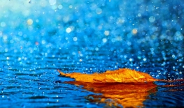 """Heaven Gave Rain"" Sermon / Pr. Ted Giese / James 5:13–18 / Sunday September 30th 2018: Season Of Pentecost / Mount Olive Lutheran Church"